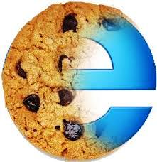 Internet explorer cookies