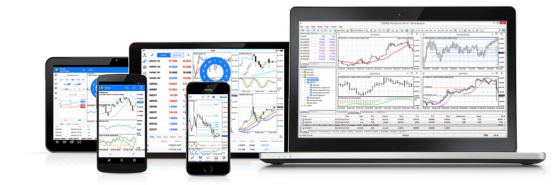 Binary options bully download free